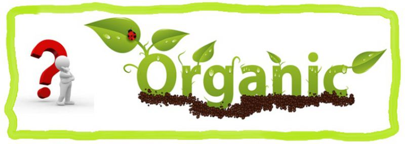 health-food-stores-5-facts-behind-the-organic-industry
